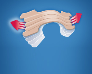 Illustrating the outward flex of a Breathe Right Nasal Strip.